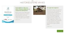 Barraca_entre_vinyes_Viu_una_experiència_enoturística_única_barreja_de_tradició_i_natura_dins_una_barraca_de_pedra_ (4)