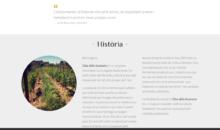 Clos_dels_Guarans_Vins_amb_ànima (1)